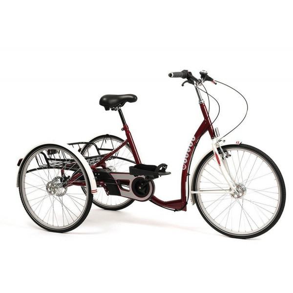 Tricycle Adulte 2219 Lagoon